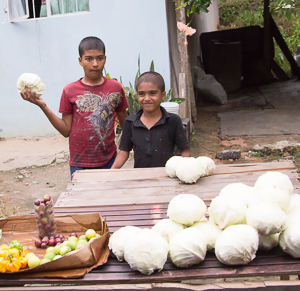Two young boys at a road side stand